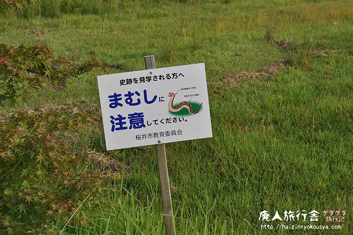 マムシニ御注意。特別史跡山田寺跡。(奈良)
