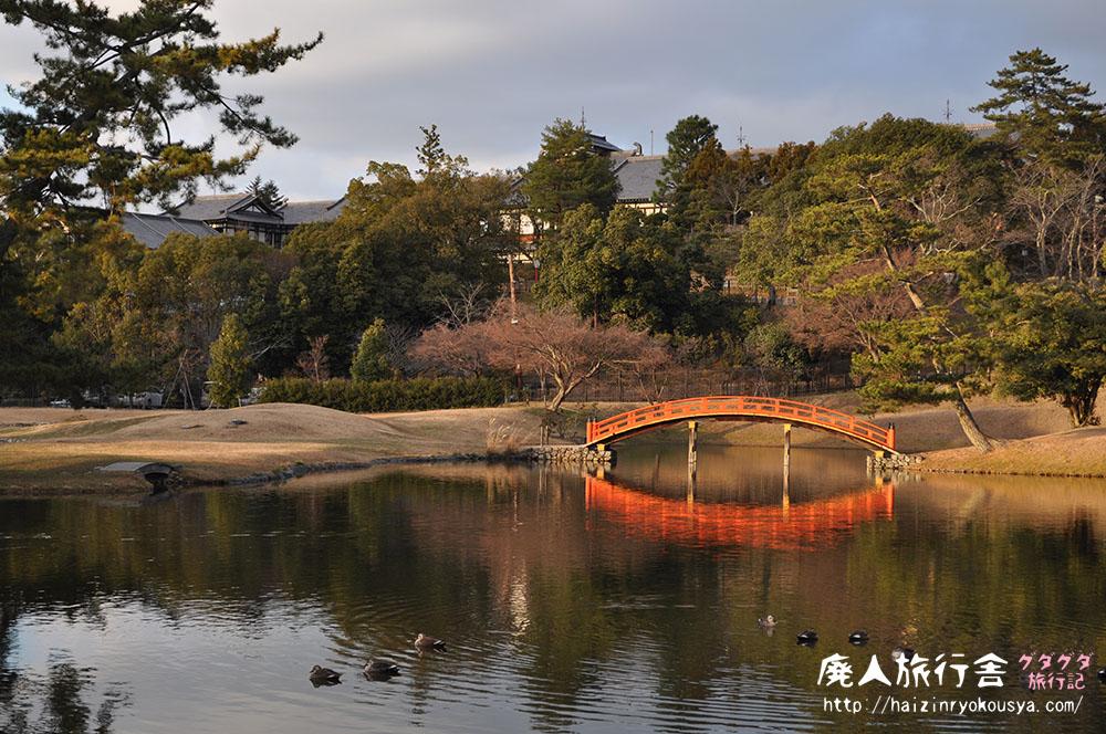 お正月に名勝庭園を独り占め!名勝大乗院庭園文化館(奈良)