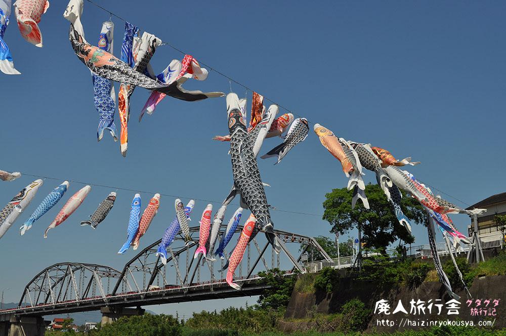 丹生川でたなびく100匹の鯉のぼり!九度山名物「鯉のぼりの丹生川渡し」(和歌山)