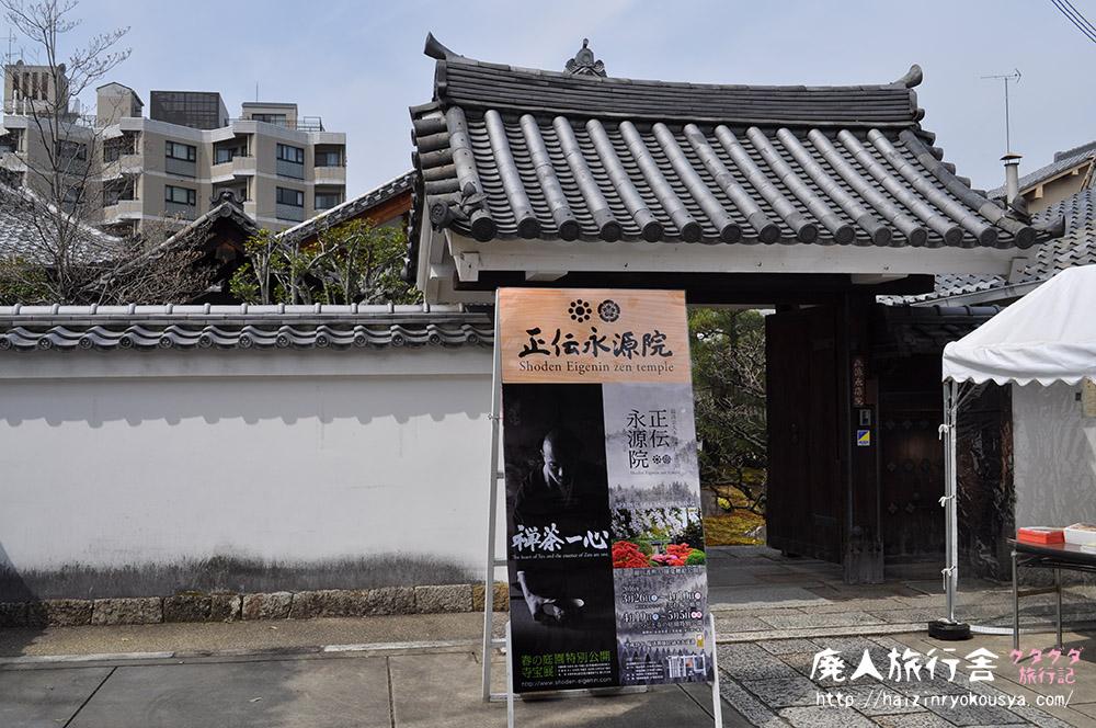 枝垂桜とつつじの庭。正伝永源院・春の庭園特別公開へ行く。(京都)