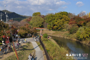 平安の頃より紅葉の名所!竜田川。(奈良)