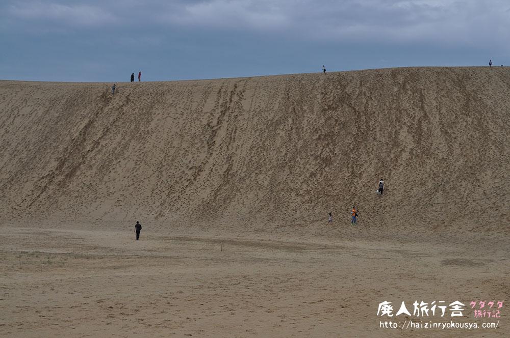 巨大な砂の壁! 鳥取旅行記その1 「鳥取砂丘」(鳥取)