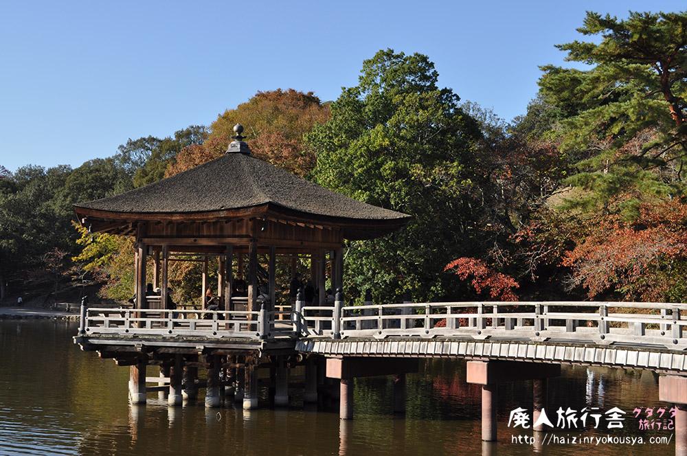 紅葉色づく奈良公園。浮見堂を見に行った。(奈良)